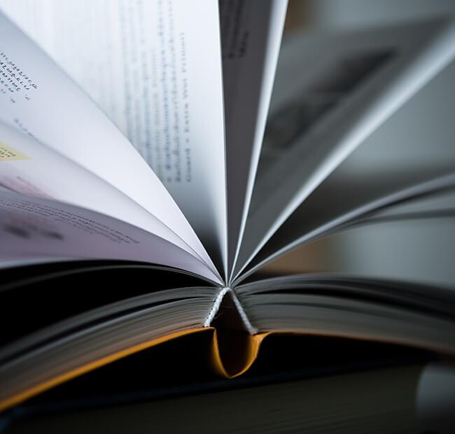 Librerías y distribuidores | Ediciones Albores